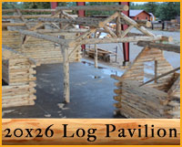 Pavilion Log Package Details