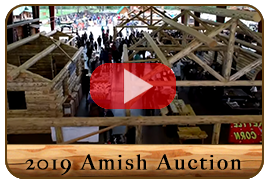 2019 Libby Montana Amish Auction
