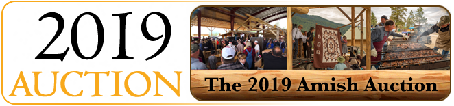 2019 Amish Auction in Libby MT