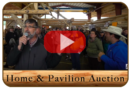 2019 Amish Auction in Libby Montana